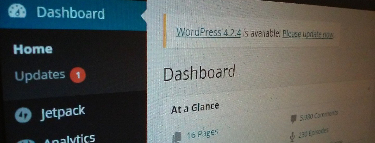 Disadvantages of A WordPress Website